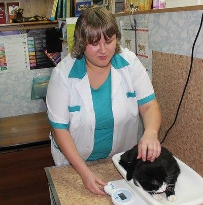 Ветеринарный врач Филиппова Екатерина Александровна
