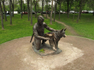 самые известные собаки